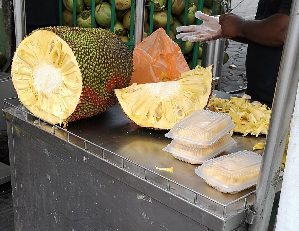 un énorme fruit nommé jacquier